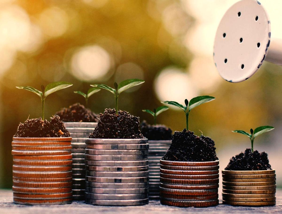 راهاندازی صندوق سرمایهگذاری بیمههای زندگی