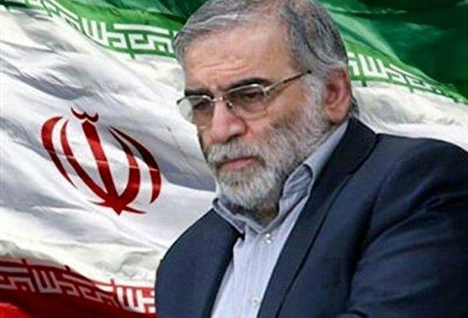 پیام وزیر اقتصاد در پی شهادت مظلومانه دکتر محسن فخری زاده